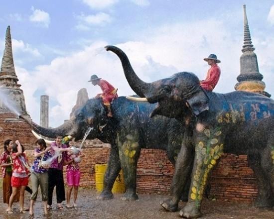songkran with elephants in ayutthaya